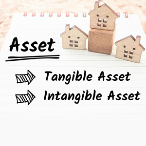 Assets and Its Types in Accounting